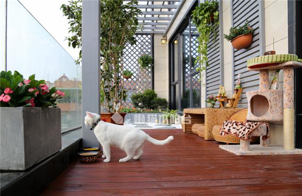 懒猫木阳台定制装修效果图图片